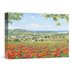 Global Gallery Del Missier 'Campo di papaveri' Stretched Canvas Artwork