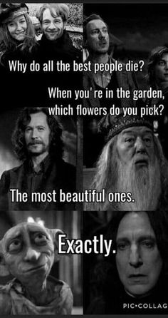 Trendy ideas for funny memes truths harry potter – Funny Quotes Harry Potter Voldemort, Harry Potter Sad, Harry Potter Pictures, Harry Potter Universal, Harry Potter Funny Quotes, Memes Humor, Funny Memes, Harry Potter Triste, Harry Potter Wallpaper