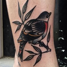 tattoo old school / traditional ink - bird (by Mike Adams)