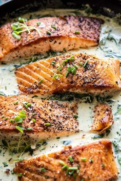 Garlic Butter Creamed Spinach Salmon - food and drinks - Cream Recipes Salmon Recipes, Fish Recipes, Salmon Food, Butter Salmon, Salmon With Cream Sauce, Creamed Spinach, Baby Spinach, Cooking Recipes, Healthy Recipes