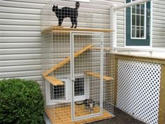 Catio - Cat Patio cool way to let cats out without the cat destroying the neighbors garden! they have large plans to and many types of cat enclosures. Crazy Cat Lady, Crazy Cats, Dog Enclosures, Outdoor Cat Enclosure, Cat Run, What Cat, Outdoor Cats, Indoor Outdoor, Animal Projects