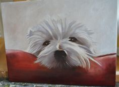 Westie - Peeking over the pillow, oil painting by Karen Santucci