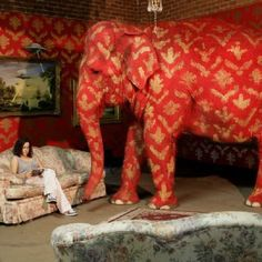 The elephant in the room, touche!