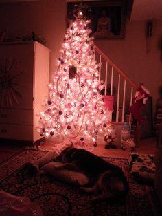 dog sleeping by a pink Christmas tree