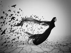 """The Flight"" by Sophia Sudarikova #photography #blackandwhite #500px"