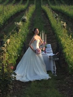 Wedding in our vineyard. Rustic but enchanting venue. Tuscany. Foodlovers. Winelovers.