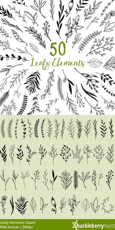 Leaf Clipart, Leaf Clip Art, Leaves, Plants, Leaf Graphics, Printable, Commercial Use. Features assorted black leaf clipart. Great for craft projects, card making, announcements, journals, digital journals, logos, blogs, etc. #clipart #graphics #png #cutfile #commercialuse #ad #bulletjournals #printables #etsy