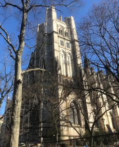 Grab your group and TOUR the Cathedral of St. John the Divine