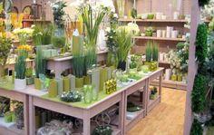 advies, ontwerp en routing winkelinrichting Garden Center Displays, Garden Centre, Visual Display, House Plants, Entrance, Display Windows, Shop Displays, Candles, Display Ideas