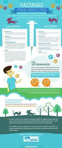 Vacunas para mascotas