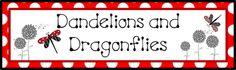dandelions and dragonflies