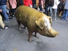 Mar. 8, 2017: Rachel the Piggy Bank at Pike Place Market