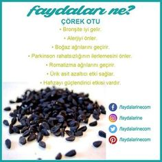 # black seed # black seed vorteile # black seed was sind die vorteile . Benefits Of Black Seed, Health Tips, Health Care, Health Cleanse, Natural Healing, Beauty Secrets, Healthy Life, Detox, Weed