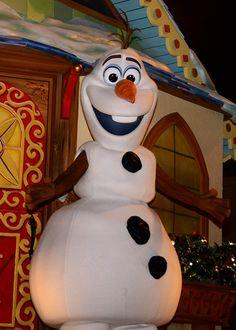 Mickey's Very Merry Christmas Party at Walt Disney World Magic Kingdom November 2014  tami@goseemickey.com