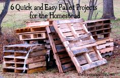 Pallets are all the rage and for good reason. Free lumber and so many uses! Here are 6 easy pallet projects that will help your homestead and best of all you don't even have to take the pallet apart! Pallet Crates, Pallet Art, Wooden Pallets, Diy Pallet Projects, Diy Craft Projects, Wood Projects, Pallet Wood, Pallet Ideas, Quick Pallet Furniture