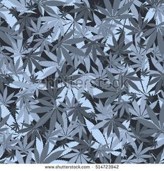 Seamless cannabis leaves pattern. Background for packaging, prints, fabric. Medical marijuana, legalize culture concept.