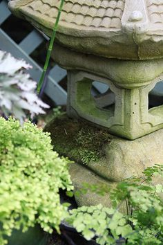 Working on covering pagoda lantern with moss.