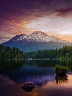 Northern Bushcraft — drxgonfly:   Another Shasta Morning (by Micah...