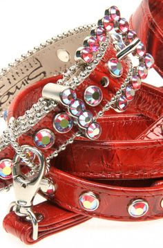 Beautiful dog collar!