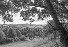 Looking Towards Dartmoor Print By John Groves