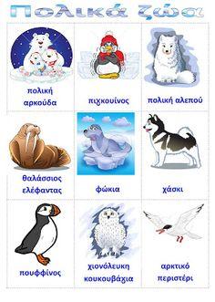 dreamskindergarten Το νηπιαγωγείο που ονειρεύομαι !: Λίστες αναφοράς για τα ζώα των πόλων Preschool Education, Preschool Activities, Learn Greek, Polo Norte, Polar Animals, Autumn Crafts, Winter Activities, In Kindergarten, Early Childhood