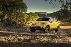 Introducing the FIAT 500X