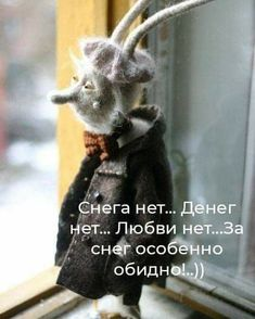 Russian Humor, Clever Quotes, Cute Toys, Stress Relief, Know Who You Are, Funny Pictures, Jokes, Bear, Life