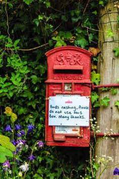 Post box in Cornwall - so quintessentially English village life Post Bus, St Just, You've Got Mail, English Village, England And Scotland, London Calling, English Countryside, British Isles, Country Life