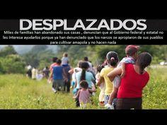 """Desplazados por narcoviolencia en Guerrero : """"Al Gobierno no le interesa......escucha....es  video........difunde  que todo el mundo  lo sepa................."""
