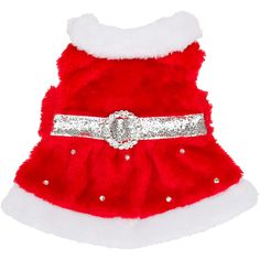 Petco Holiday Mrs Claus Dog Costume