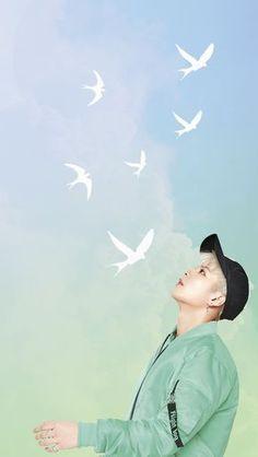 Junior idol spread free wallpapers