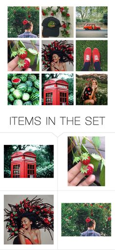 """""""COPYCAT   PLOTS"""" by r-edvelvet ❤ liked on Polyvore featuring art and country"""