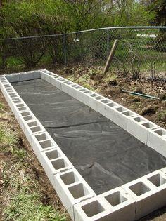 cinder blocks ~ raised garden bed.....bottom layer is wired fencing, then week block lay blocks around edge...
