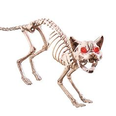 cat decor halloween - Scary Sound-activated Skeleton Cat Halloween Decoration -- You can get more details by clicking on the image. (This is an affiliate link) Halloween Skeleton Decorations, Halloween Ornaments, Halloween Skeletons, Halloween Cat, Spirit Halloween, Halloween Themes, Posable Skeleton, Dog Skeleton, Scary Sounds