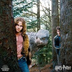 Daniel Radcliffe and Emma Watson in Harry Potter and the Prisoner of Azkaban Harry Potter Castle, Harry Potter Icons, Harry Potter Characters, Harry Potter Hogwarts, Harry Potter Memes, Ron And Hermione, Hermione Granger, Draco Malfoy, Percy Jackson