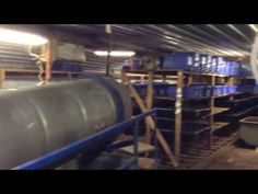 Mega Huge European Worm Farm! Yup I Am Excited! - YouTube