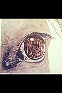 Horse eye # pencil art #art Suzy Nesmith