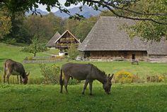 Courtesy: Swiss Open-Air Museum Ballenberg, Hofstetten (Switzerland).