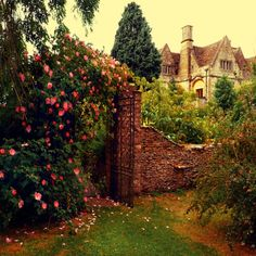 England-- looks like a scene from the secret garden Beautiful World, Beautiful Gardens, Beautiful Places, Beautiful Beautiful, Beautiful Flowers, Diy Garden, Dream Garden, Garden Gate, Garden Walls