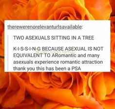 Omg yes. As an asexual the S-I-T-T-I-N-G joke bothers me bc we do feel romantic attraction! Just not sexual attraction! We can date!