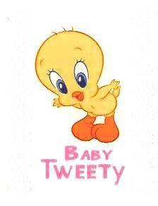 tweetybird funny sayings  Tweety Bird Image  Tweety Bird