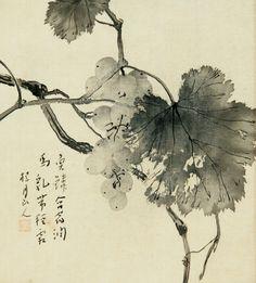 Keigetsu Matsubayashi 松林 桂月 (1876-1963), Grape Vine. Japanese Ink Painting, Japanese Artwork, Japanese Prints, Chinese Painting, Poetry Painting, Zen Painting, Japan Painting, Tinta China, Japanese Flowers