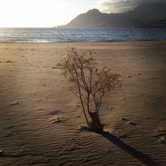 #Plakias #beach #holidays #Creta #Greece #tourism Creta Greece, Greece Tourism, Celestial, Holidays, Sunset, Beach, Water, Outdoor, Gripe Water