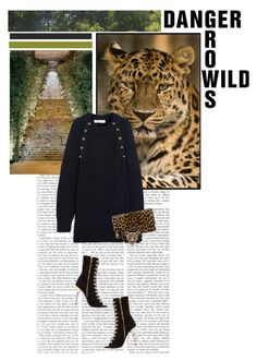"""""""Dangerous Leopard"""" by hannahrox313 ❤ liked on Polyvore featuring GALA, Chloé, Clare V., Palm Beach Jewelry and Balmain"""