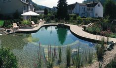 Middle size swimming pools and small ponds, that are good for swimming, have many advantages that make homes safer, more functional and pleasant.