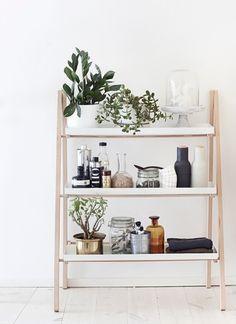 いつも飾っている棚に小さめの観葉植物をプラスするだけで、こんなに違ったおしゃれな雰囲気に。今すぐにでも試せる簡単な方法です。