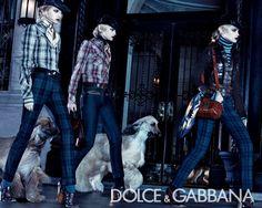 Dolce & Gabbana fall/winter 2008/2009 ad campaign