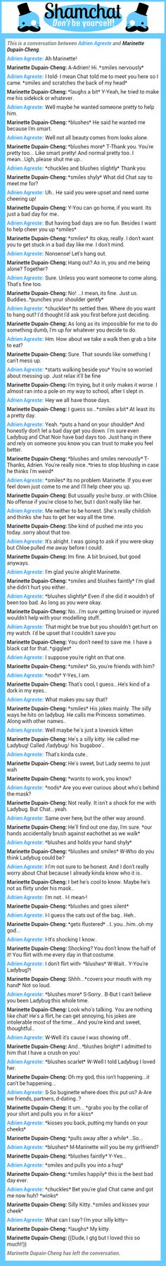 A conversation between Marinette Dupain-Cheng and Adrien Agreste