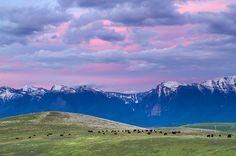 Missoula, Montana Spent a summer here as a door to door salesman freshman year of college.