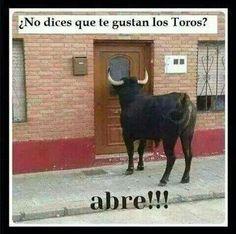 Odio las corridas de toros